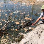 Xử lý nước bị nhiễm amoni như thế nào là đúng quy chuẩn an toàn?