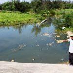 Mâu thuẫn trong nhà máy xử lý nước thải TP Vinh