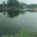 Cần cải thiện xử lý nước thải sinh hoạt tại các khu đô thị, dân cư tập trung